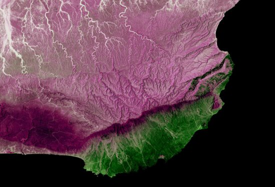 Earth As Art - GIS and Forestry