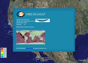 OBIS Seamap in Google Earth