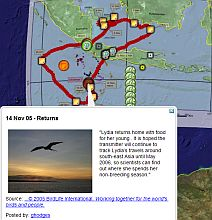 Lydia the Frigatebird in Google Earth