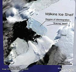 Wilkins Ice Shelf Collapse in Google Earth